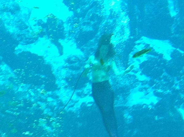 mermaid show at Weeki Wachee